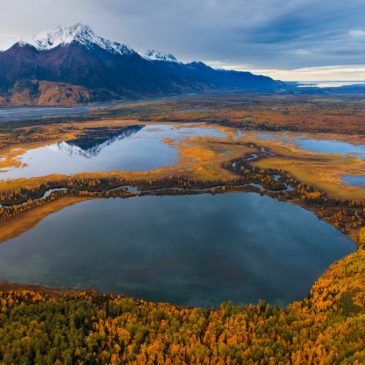 Great Land Trust secured important coastal wetlands in Alaska.