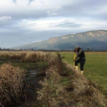Hilary Blackman of Dinsdale Farm, Replanting Hedgerow Photo by P. deKoning