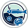 Pacific Marine and Estuarine Partnership: Data products and Story Map