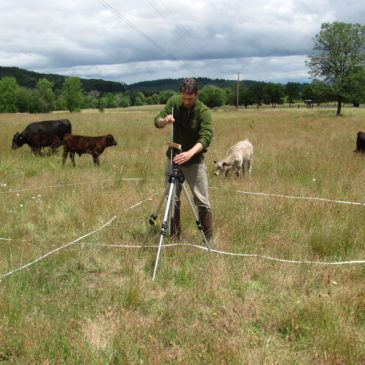 Greenbelt Land Trust staff collects vegetation data at Bald Hill Farm. Photo: Bob Altman