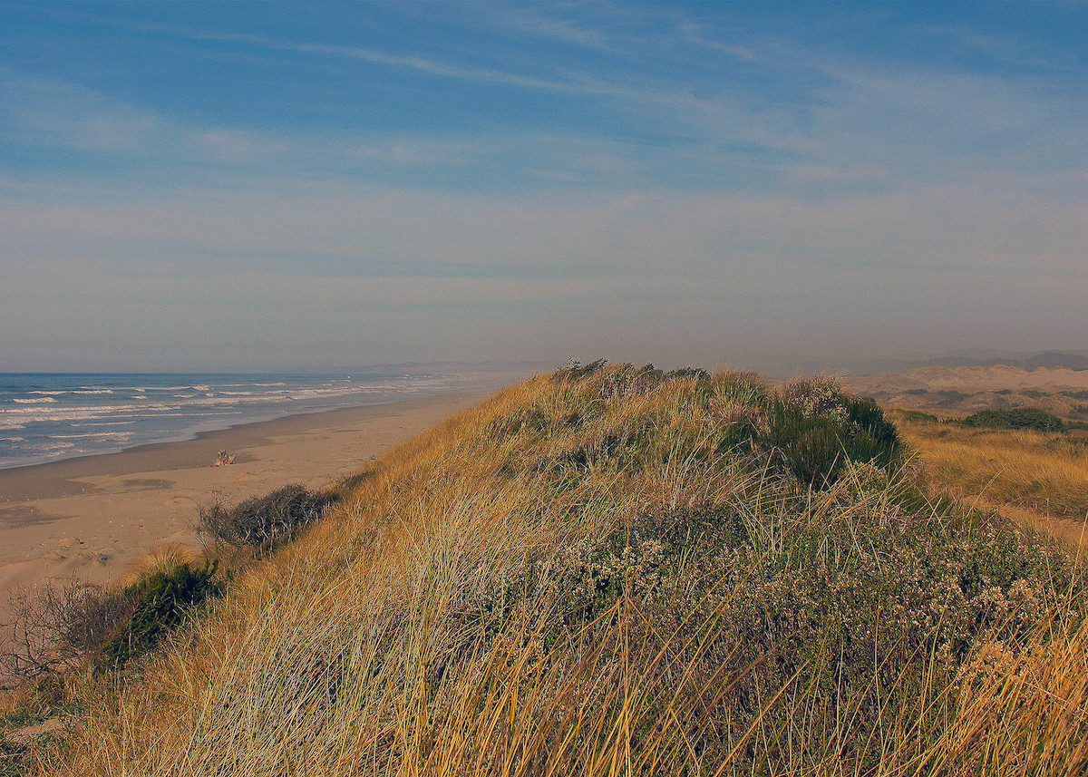 Sand Dunes, Oregon / Bureau of Land Management