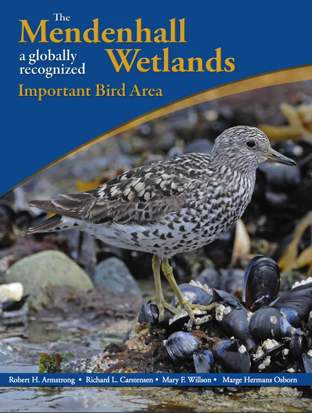 WANT TO KNOW MORE ABOUT THE MENDENHALL WETLANDS AND THE IMPORTANT BIRD AREA?