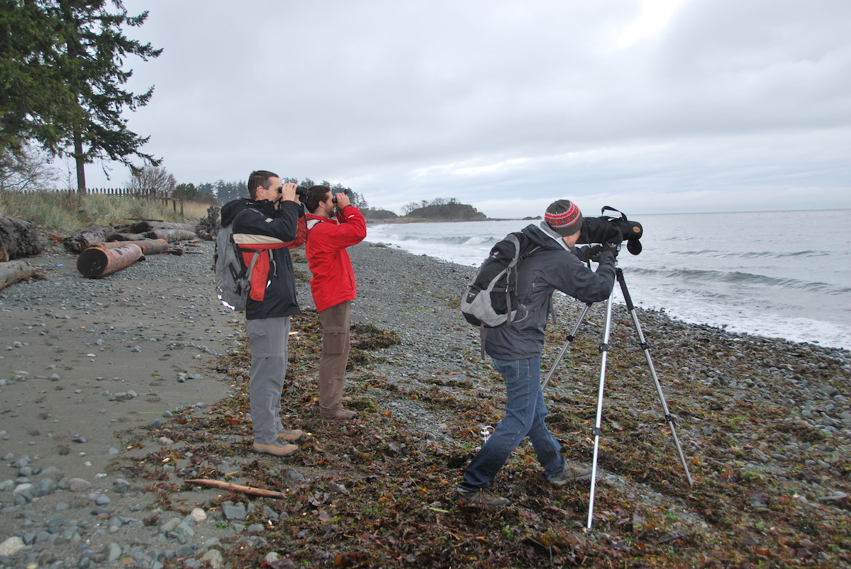 Count participants on Vancouver Island.<br>Karen Barry