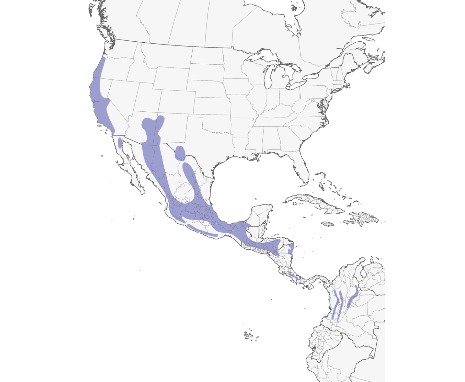 Distribution Map of Acorn Woodpecker from Cornell Lab of Ornithology.