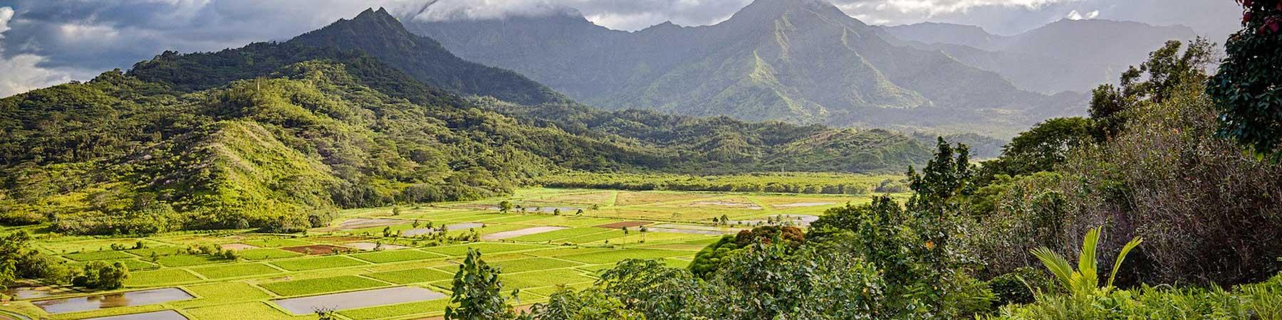Hawaiʻi Wetlands Conservation Priority