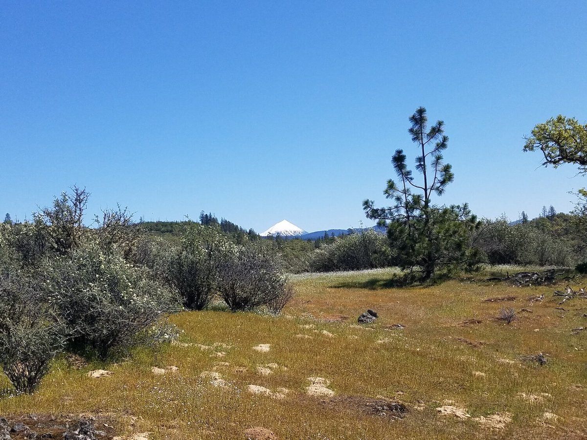 A mosaic of grasslands, chaparral, and woodlands on the property.<br>Photo courtesy Southern Oregon Land Conservancy