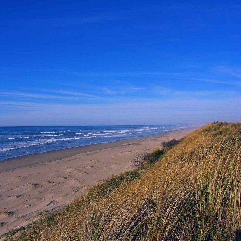 Coastal Dunes, ©Bureau of Land Management