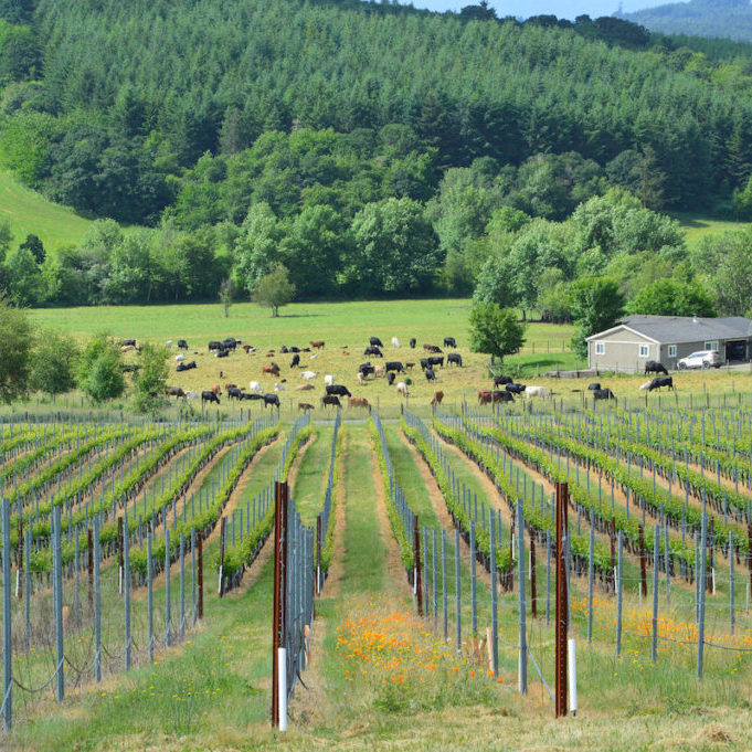 Willamette Valley OregonNatural Resources Conservation Service