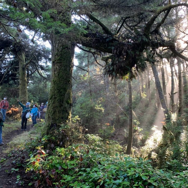 A group from the California Native Plant society, North Coast Chapter, explores the new conservation area.